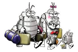 Lice family leaving